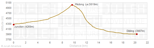 Junction - Pikdong La - Dibling