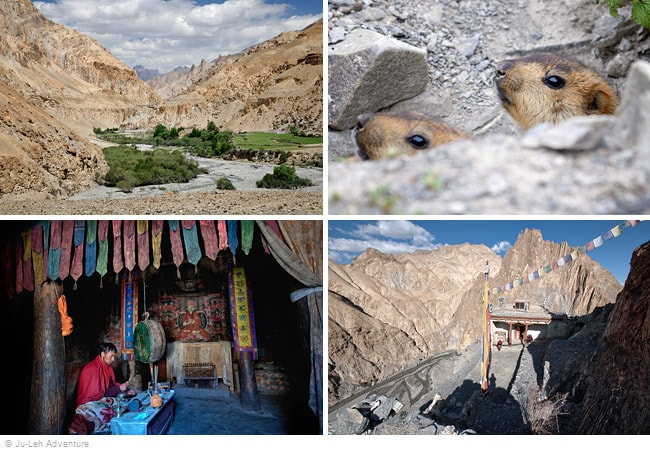 6-day Markha Valley trek from Chilling, Fixed Departures, Ladakh