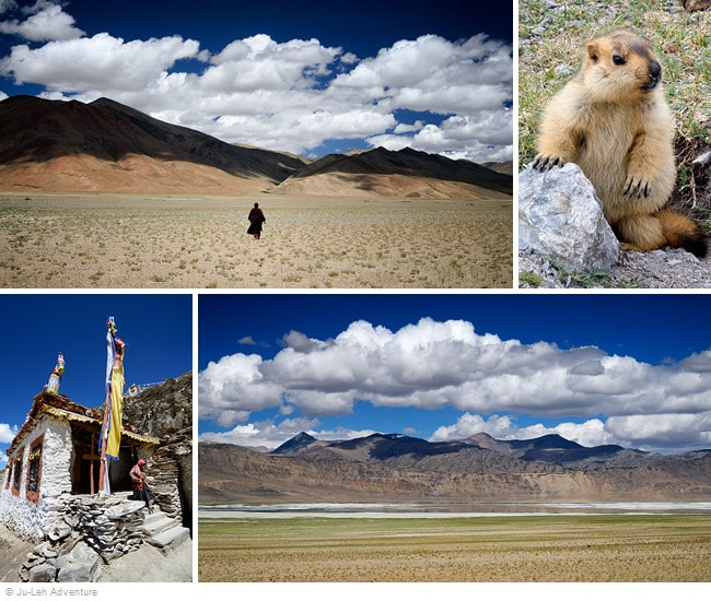 11-day Rumtse to Tso Moriri trek, Fixed Departures, Ladakh