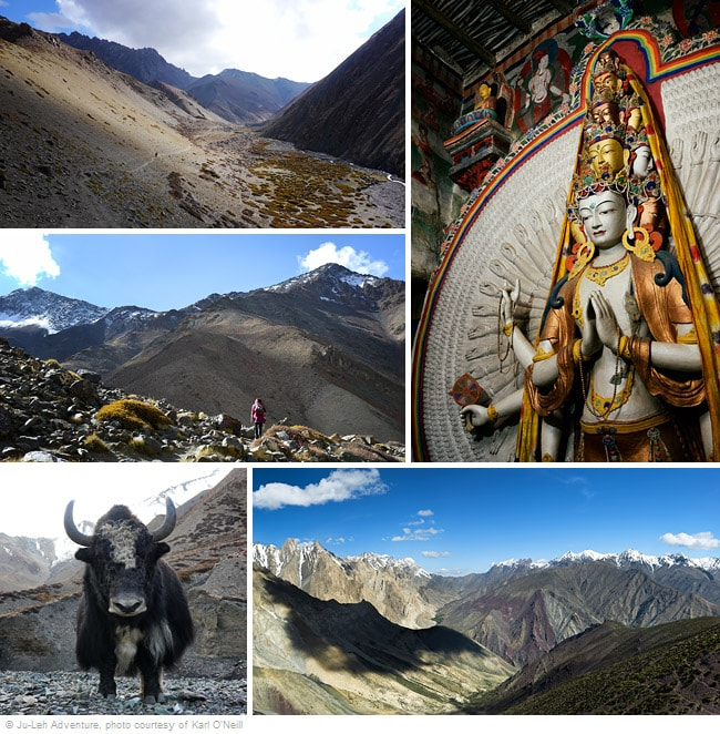Lamayuru to Chilling trek in Ladakh