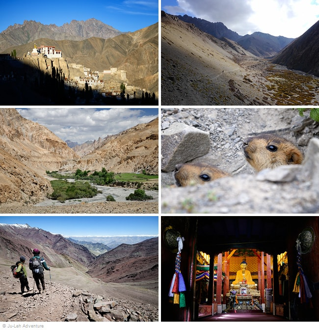 Lamayuru to Hemis trek in Ladakh